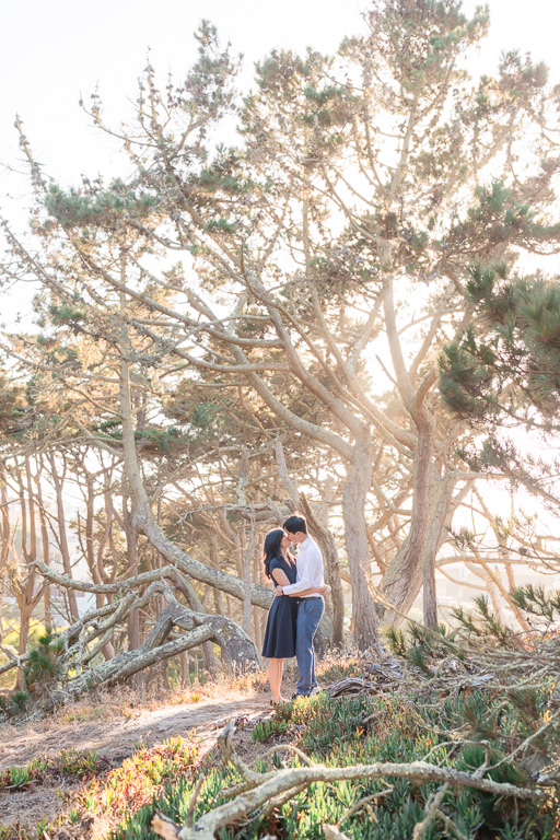 San Francisco woods golden light rays engagement photo