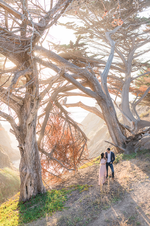 Half Moon Bay Ritz-Carlton engagement session