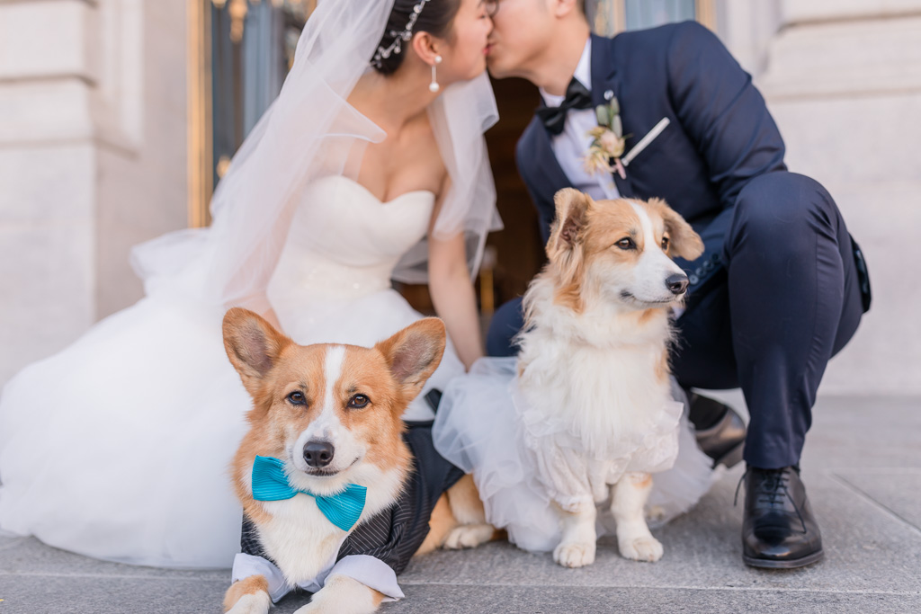 Wally and Ginger the corgis with their parents kissing