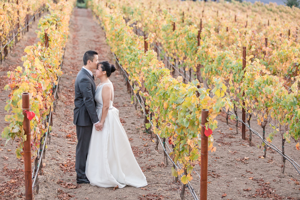 winery wedding photo of couple holding hands