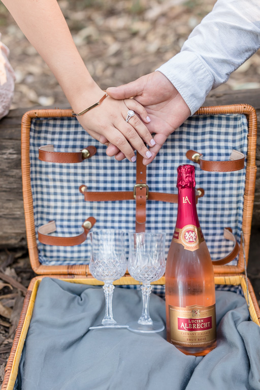 picnic basket with champagne glasses