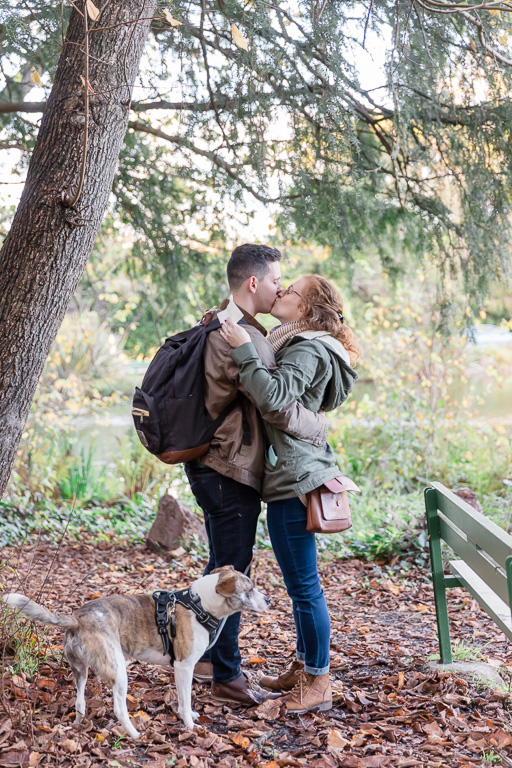 Golden Gate Park surprise engagement with puppy
