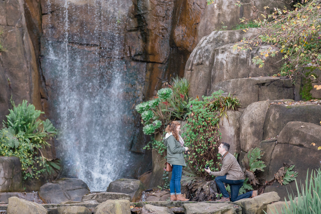 San Francisco Stow Lake waterfall surprise proposal