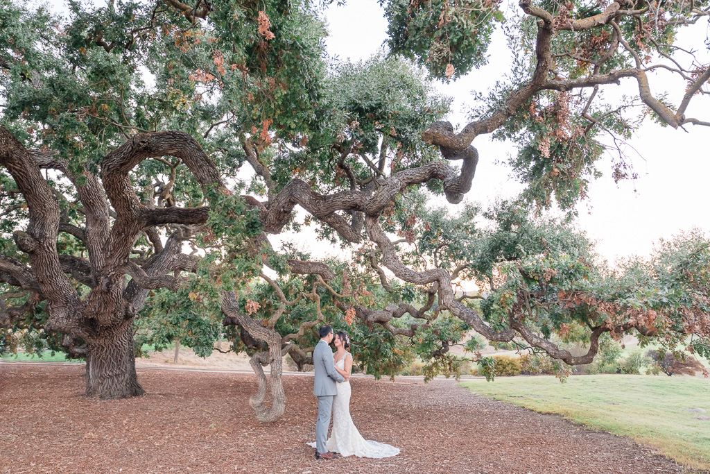 Ruby Hill Golf Club wedding portrait by the big oak tree