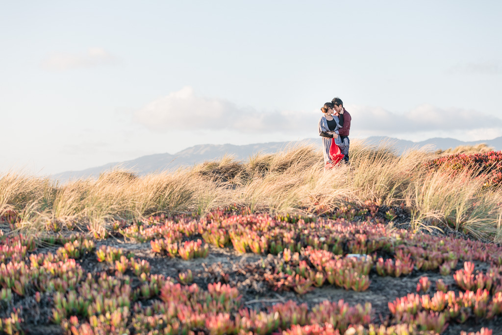 Ocean Beach succulent field engagement photo