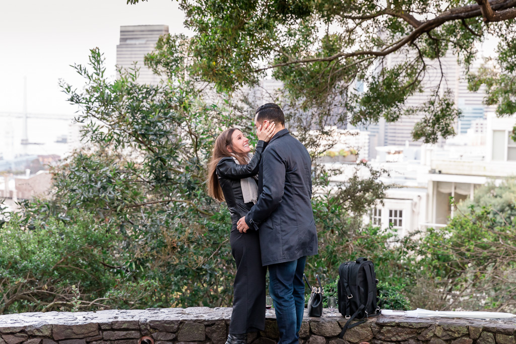 Telegraph Hill surprise proposal