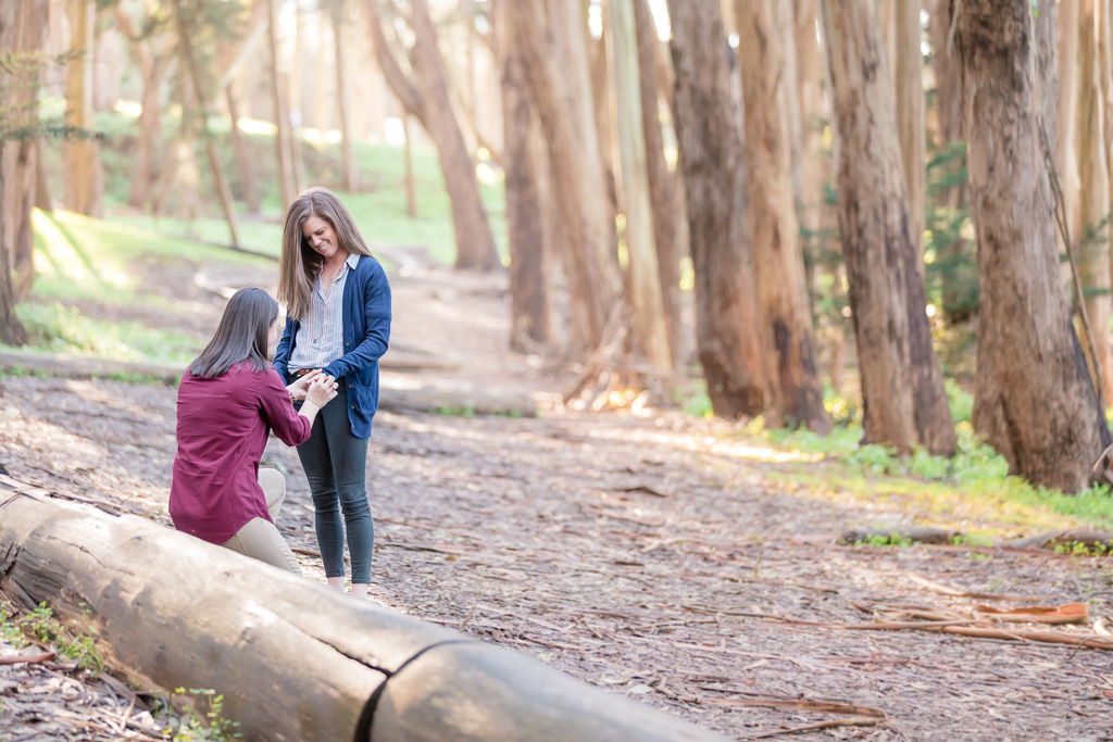 Presidio Wood Line surprise proposal