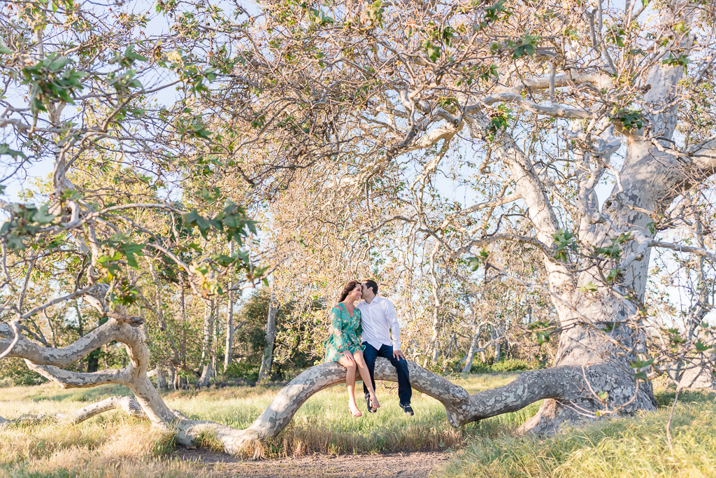 Sycamore Grove Park engagement picture with the magical fallen tree