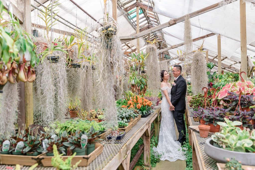greenhouse wedding at Shelldance Orchid Gardens