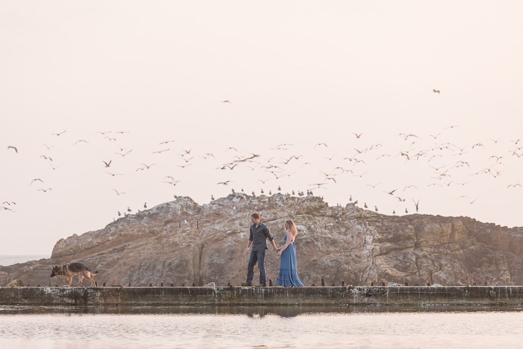 engagement photos with hundreds of seagulls