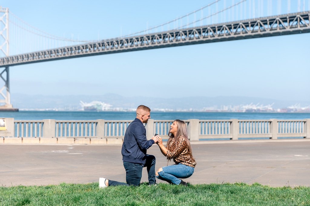 San Francisco Embarcadero Bay Bridge surprise proposal