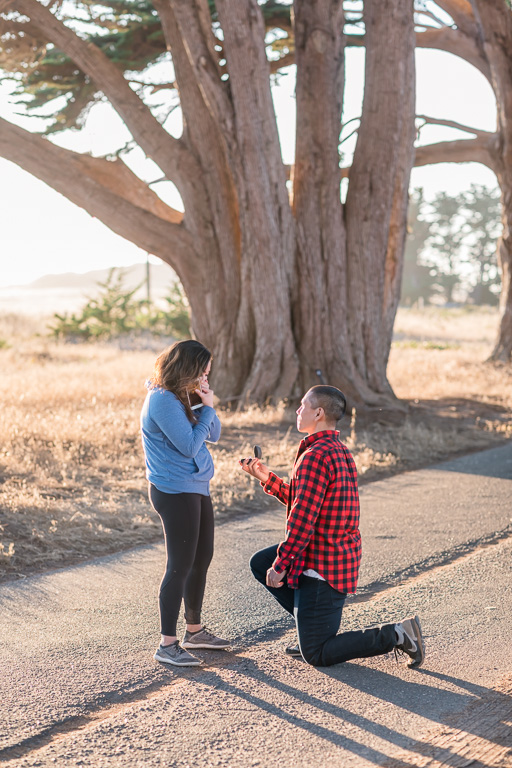 point reyes surprise proposal after a hike