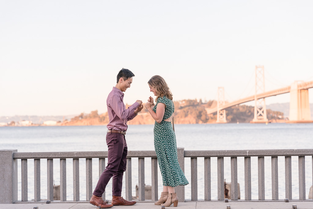 surprise engagement proposal along the Bay
