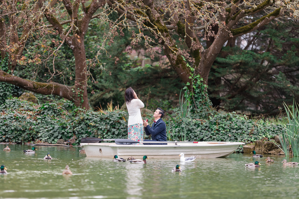 Golden Gate Park surprise proposal