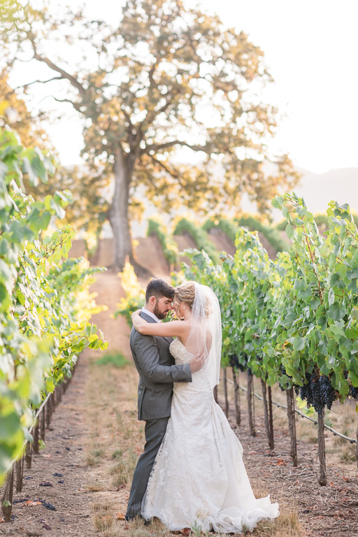 B.R. Cohn Winery wedding sunset portrait in the vineyards