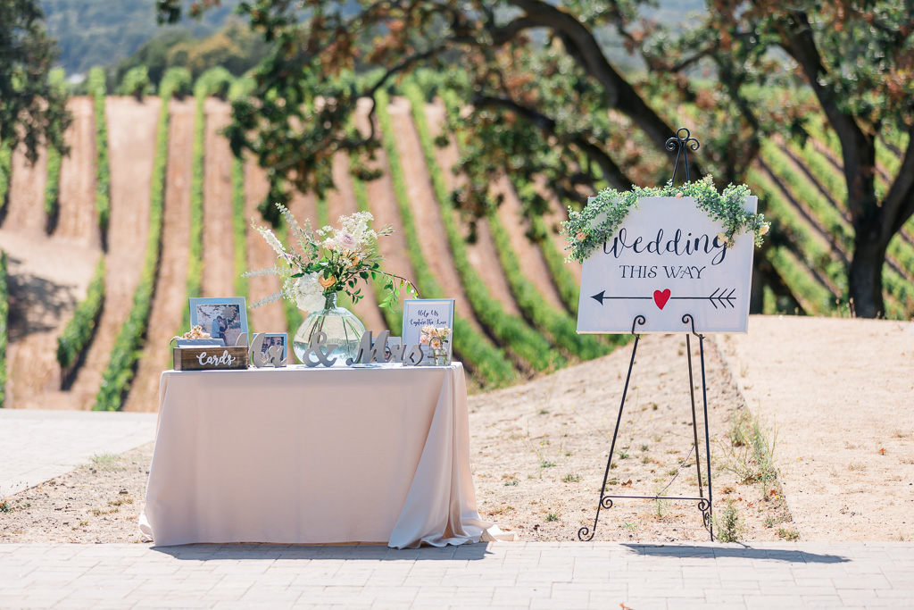 gorgeous wedding ceremony signage with a stunning vineyard backdrop