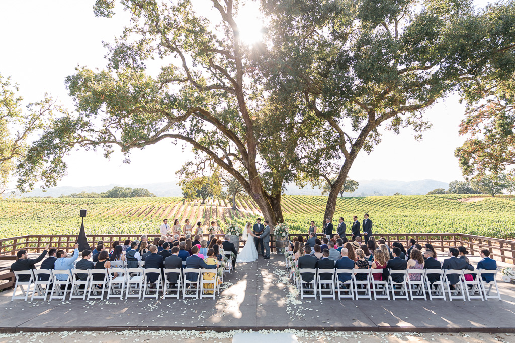 BR Cohn wedding ceremony with the vineyard backdrop