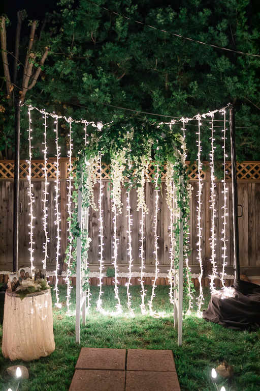 proposal arch with twinkle lights