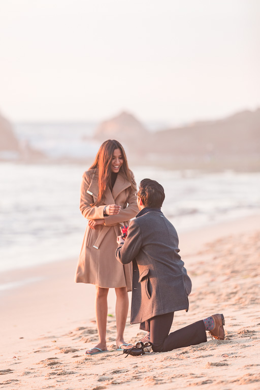 soft dreamy surprise proposal photo