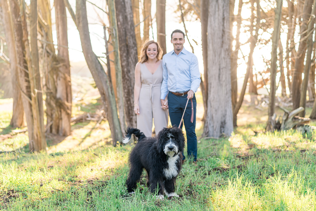 cute doggie in engagement photo