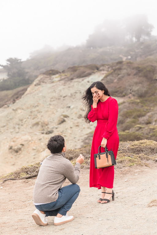 surprise proposal at a San Francisco lookout