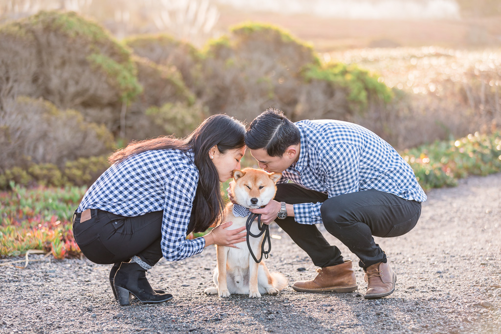 parents kissing the innocent face of that cute Shiba Inu