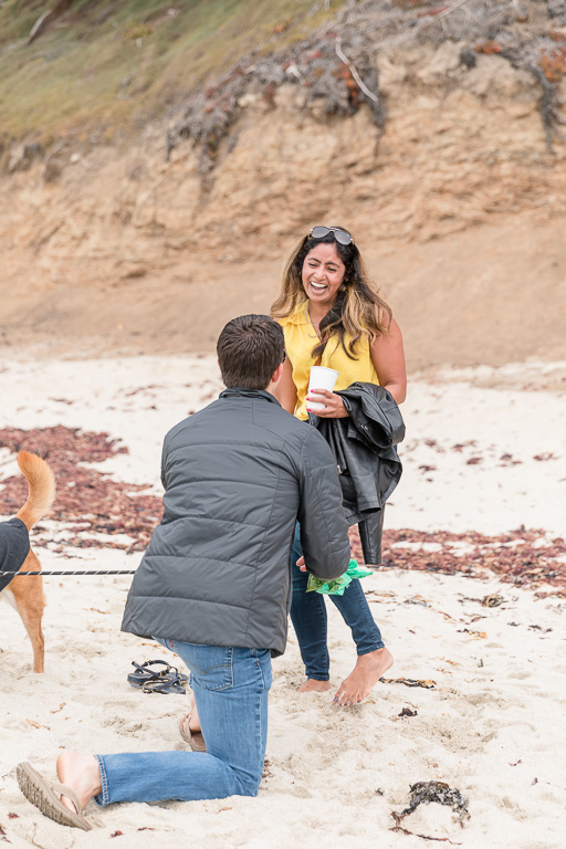 surprise proposal at Moss Beach with dog