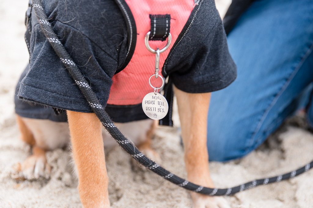 cute dog tag custom-made for surprise propsoal