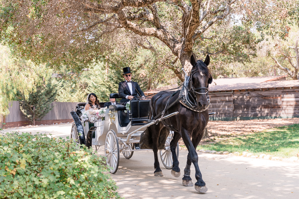 bride and father's entrance in the horse and carriage