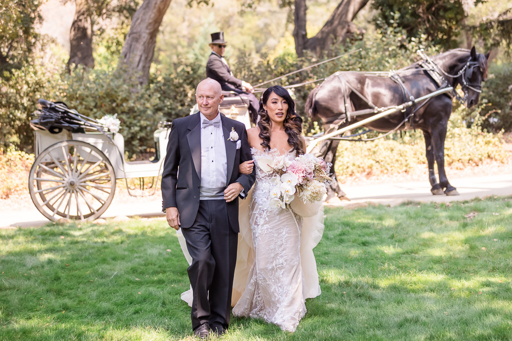 bride got dropped off at the aisle by the horse and carriage
