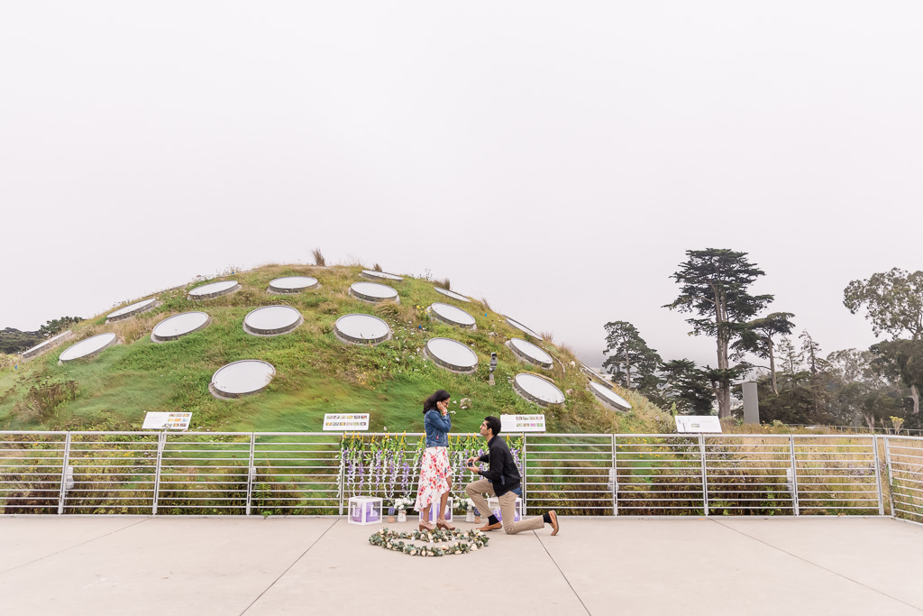 surprise proposal on the Living Roof of the California Academy of Sciences