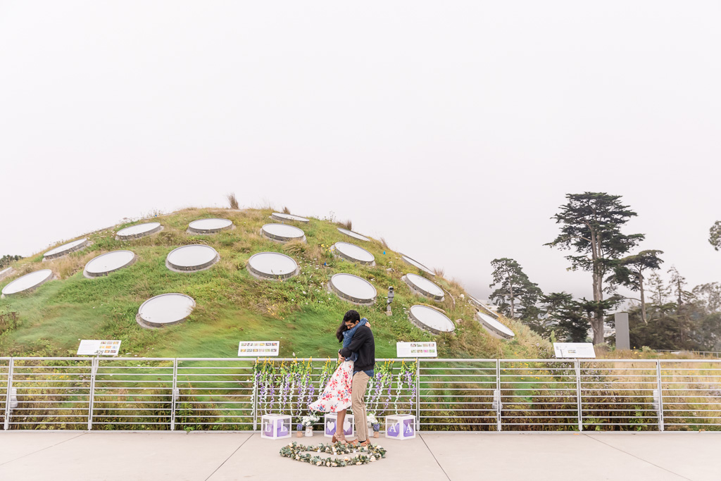 Cal Academy Living Roof